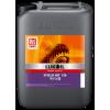 ISO 150 HUILE D'ENGRENAGE REDUCTEUR PALIER STEELO HST (20L)