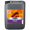 ISO 320 HUILE D'ENGRENAGE SYNTHETIQUE STEELO (20L)