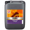 ISO 220 HUILE D'ENGRENAGE SYNTHETIQUE STEELO (20L)